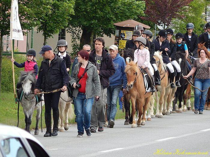 den koni 006